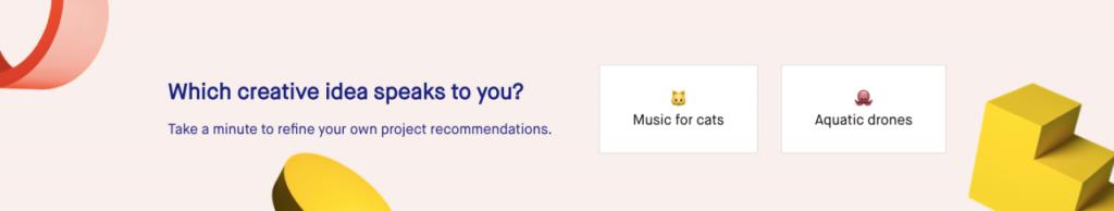 Kickstarter Questionnaire for Adjustable Feed